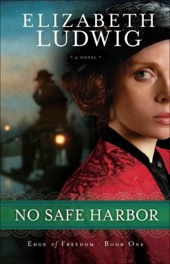 Elizabeth Ludwig's No Safe Harbor