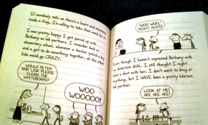 The Third Wheel Diary of a Wimpy Kid Book 7 by Jeff Kinney. Giveaway