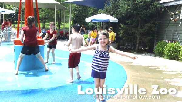 Louisville Zoo: Papa John's Splash Park