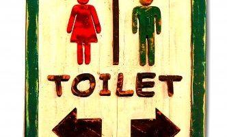 Delta Faucet Corrente Toilet