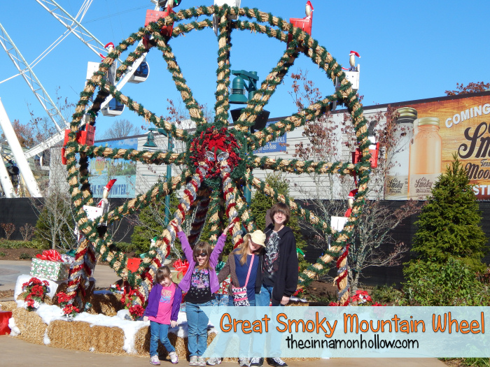 Great Smoky Mountain Wheel | The Island Pigeon Forge