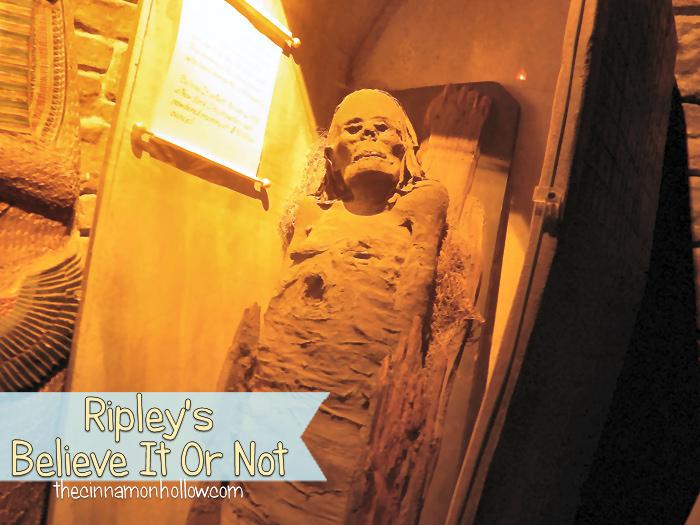 Ripleys Believe It Or Not Mummy
