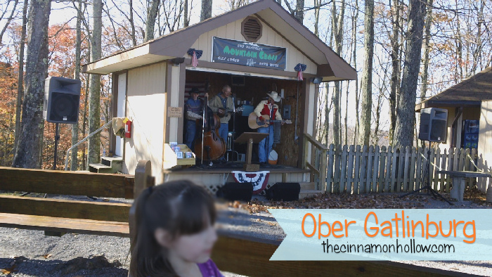 Bluegrass Band At Ober Gatlinburg