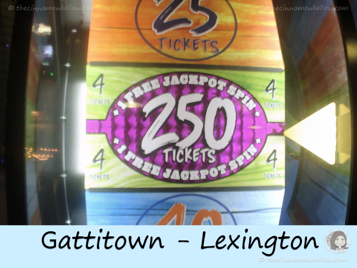 Gattitown Spin
