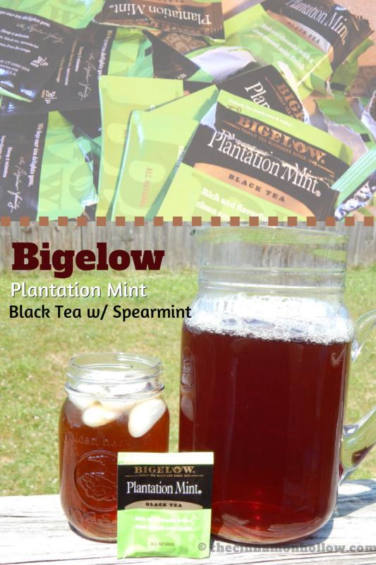 Bigelow Tea Plantation Mint