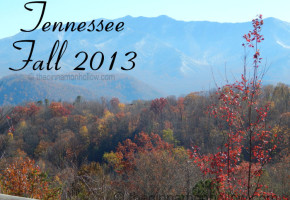 Smoky Mountains Fall 2013