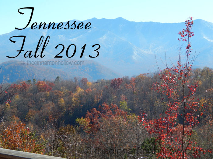 Smoky Mountains Fall 2013