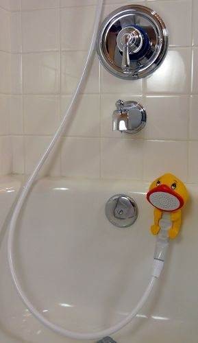 Rubber Duckie and Friends Shower Wand
