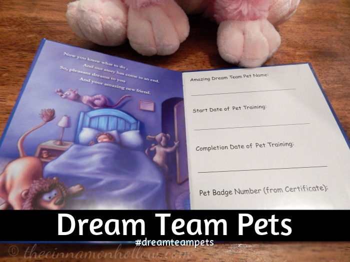 Dream Team Pets