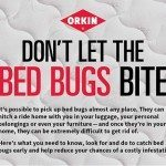 Orkin Bed Bug Feud Game & CleanRest Pillow Encasement #Giveaway #OrkinMan #BedBugFeud