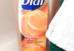 Dial Sugar Cane Husk Scrub Deep Cleansing Moisturizing Hand Soap