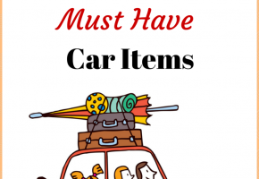 6 Summer Must Have Car Items