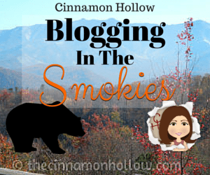 Blogging In The Smokies