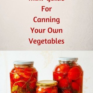 Plentiful Produce: A Step-by-Step Mini-Guide For Canning Your Own Vegetables
