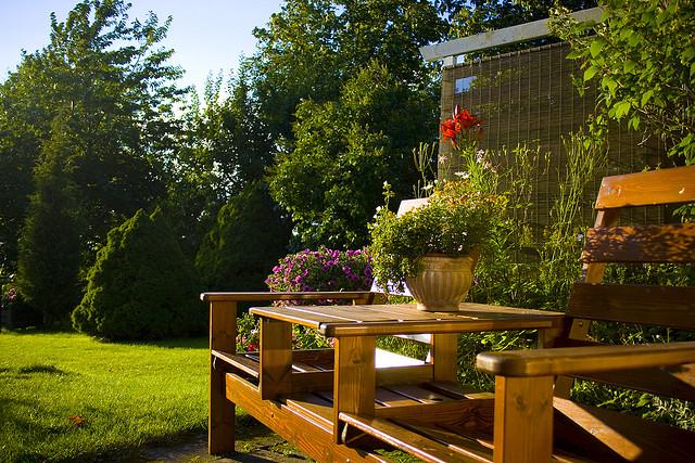 Family Backyard Designs : Family Friendly Backyard Design Ideas