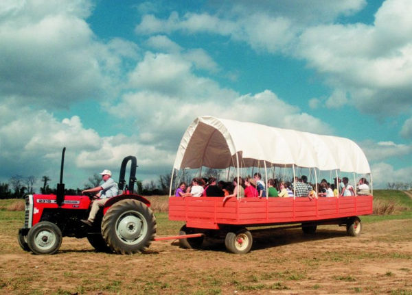 Visit The Corn Maze At Oakes Farm!