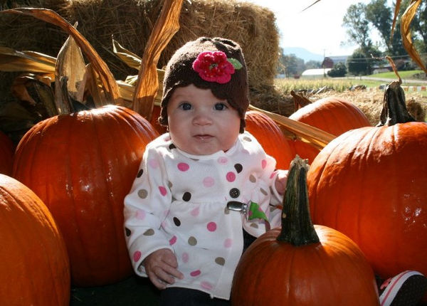 Oakes Farm - corn maze, a delightful pumpkin patch, an old-fashioned hayride, and lots more
