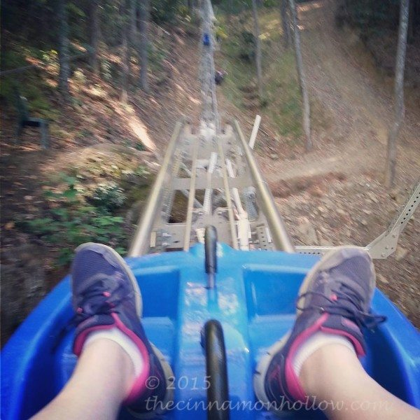Ski Mountain Coaster