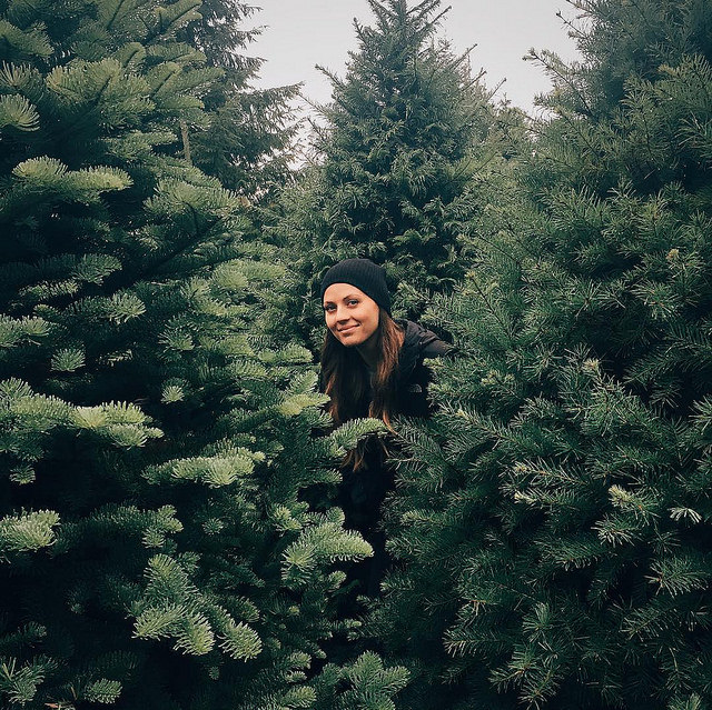 Finding The Perfect Christmas Tree For Your Home