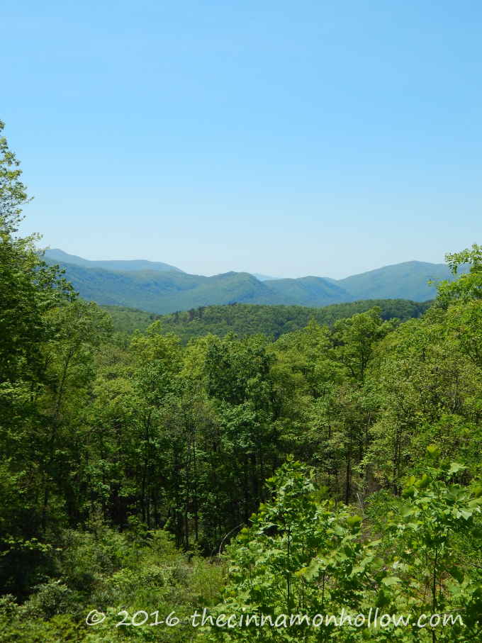 Smoky Mountains - Roaring Forks Motor Trail