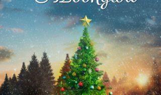 Review Of Mistletoe At Moonglow By Deborah Garner