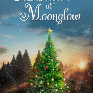 Review Of Mistletoe At Moonglow By Deborah Garner