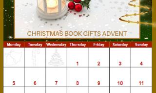 See This Fun Interactive Book Themed Christmas Advent Calendar #bvbtours