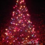 Decorate Your Yard With Crab Pot Christmas Trees