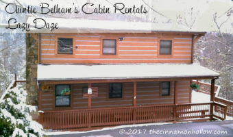 Auntie Belham's Cabin Rentals - Lazy Daze