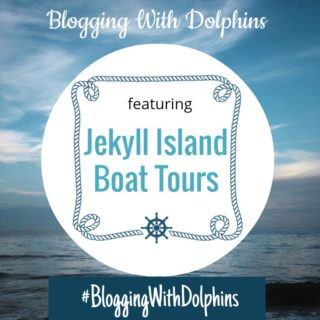 I'll Be Blogging With Dolphins This Summer!