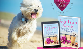 Check Out Read, Write, Love At Seaside By Addison Cole