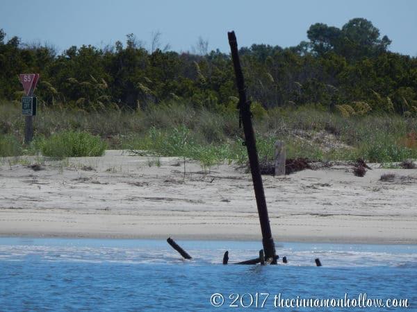 Shrimp Boat - Jekyll Island Dolphin Tour