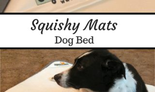 Squishy Mats Dog Bed
