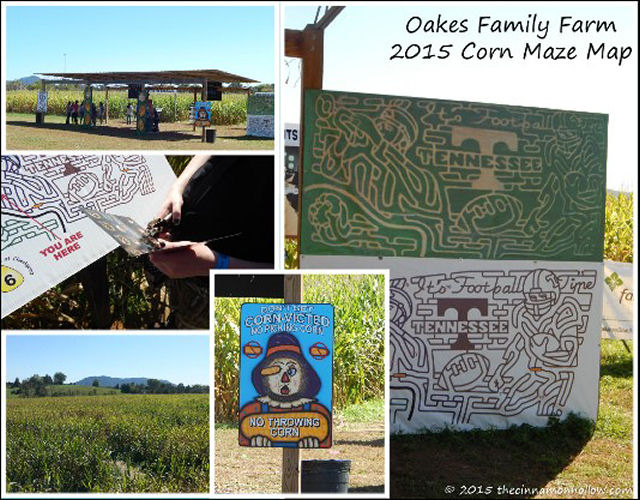 Fall Fun At Oakes Family Farm Corn Maze And Pumpkin Patch