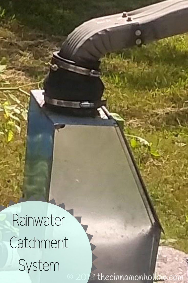 Cistern: Collecting Water In A Rain Water Catchment System