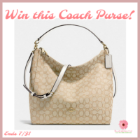 Enter To Win This Beautiful Coach Convertible Hobo Purse!