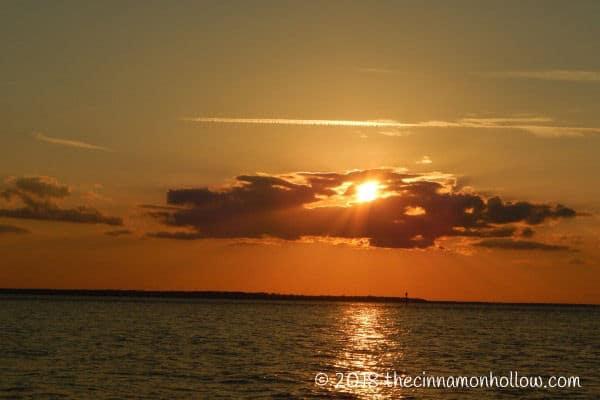 Jekyll Island Sunset Dolphin Tour