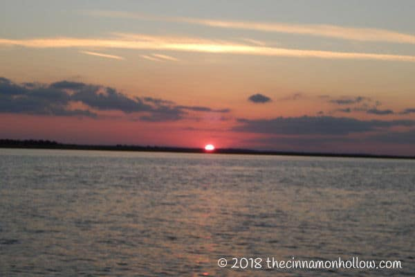 Jekyll Island Sunset Dolphin Tour