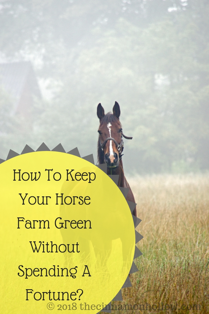 How To Keep Your Horse Farm Green Without Spending A Fortune