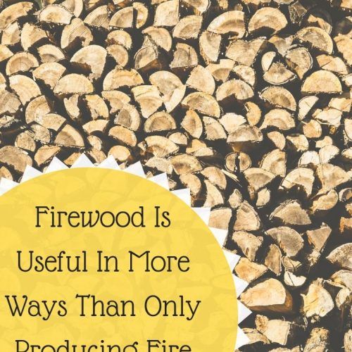 Firewood Is Useful In More Ways Than Only Producing Fire And Heat