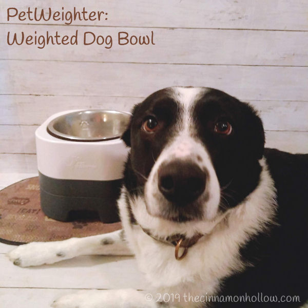 PetWeighter Weighted Dog Bowls