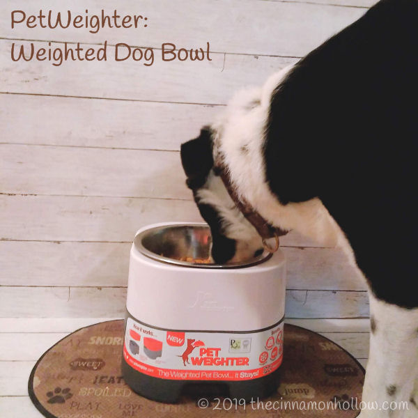 Petweighter Dog Food Bowl