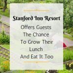 Stanford Inn Resort Offers The Chance To Grow Your Lunch And Eat It Too