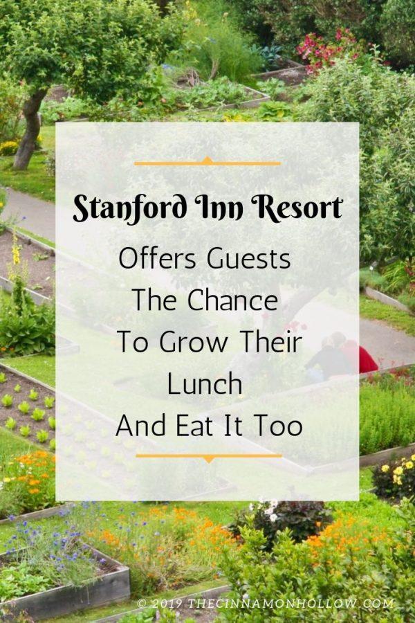 Stanford Inn Resort