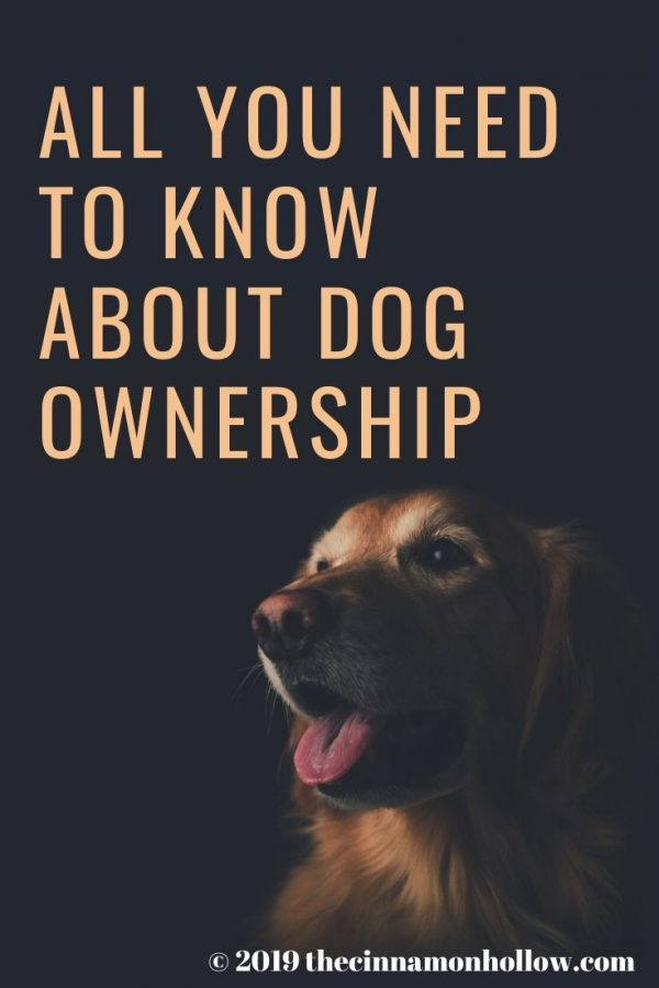 Dog Ownership