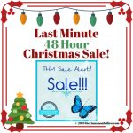 THM Cyber Monday Continued Sale