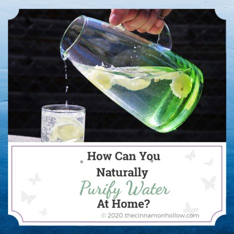 How Can You Naturally Purify Water At Home?
