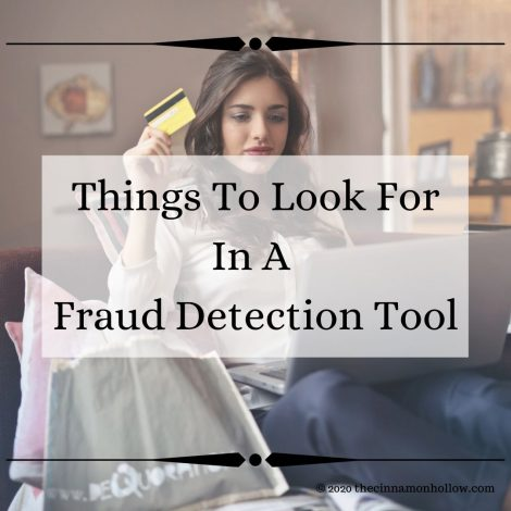 Things To Look For In A Fraud Detection Tool