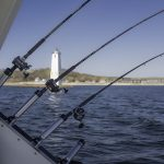 4 Things To Consider When Booking A Fishing Charter