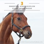 3 Essential Horse Supplies Every Owner Needs